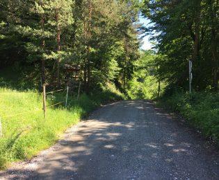 Blick auf einen  Streckenabschnitt zwischen Remsnik und Radlpass