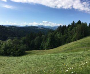 Blick zurück in Richtung Südosten, am Horizont der Pohorje